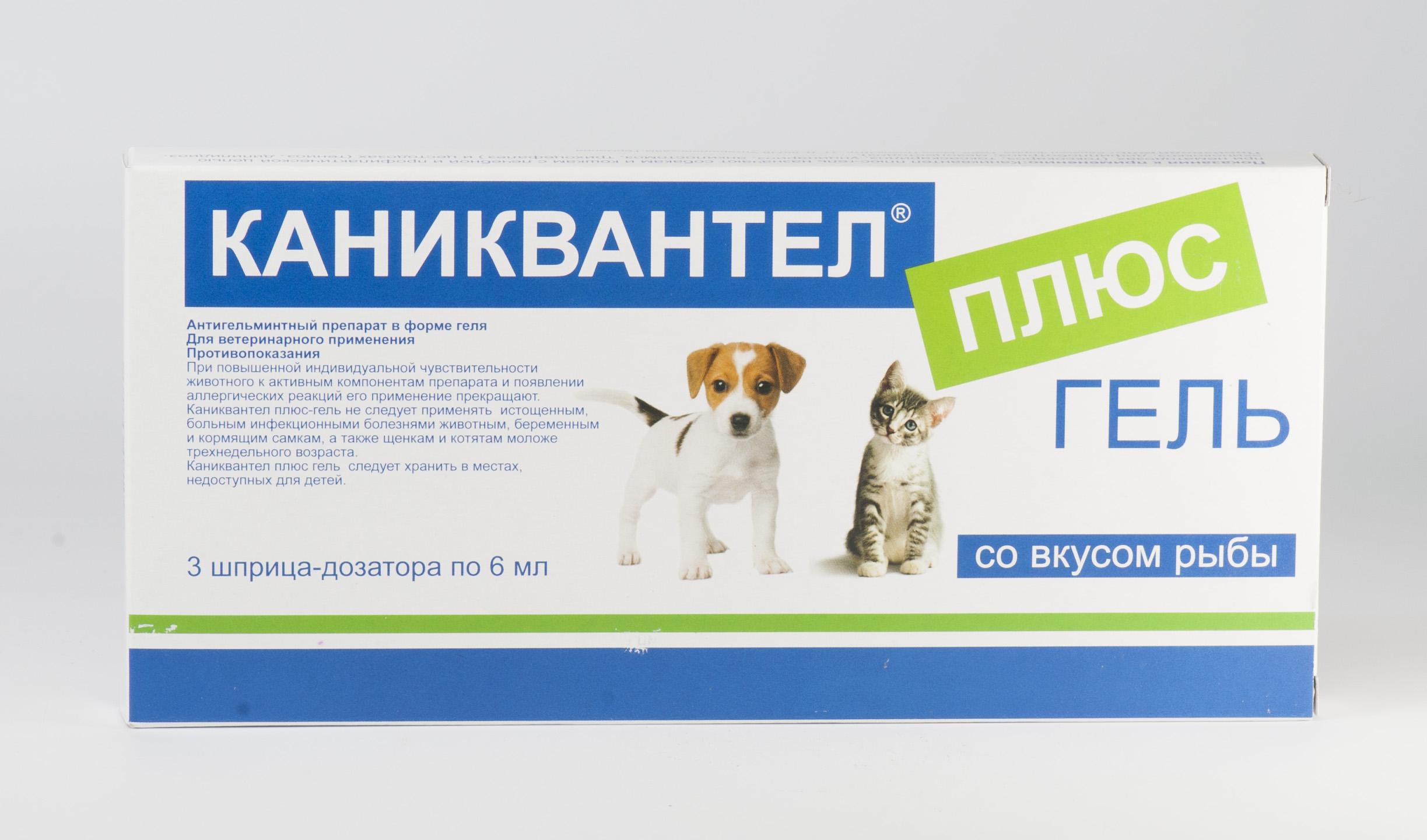таблетки от внутренних паразитов у кошек