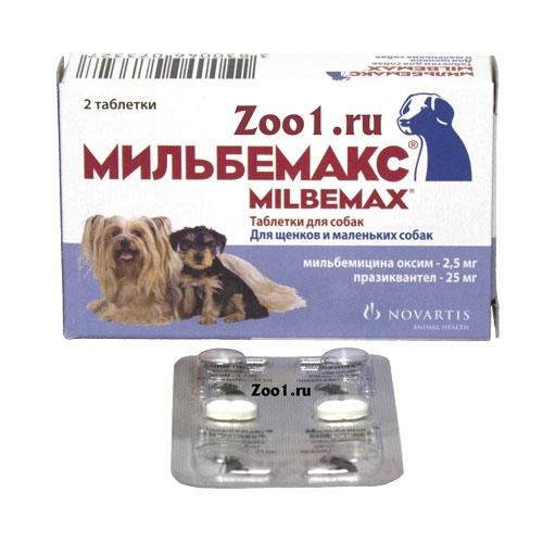 Таблетки от глистов для собак: классификация и применение