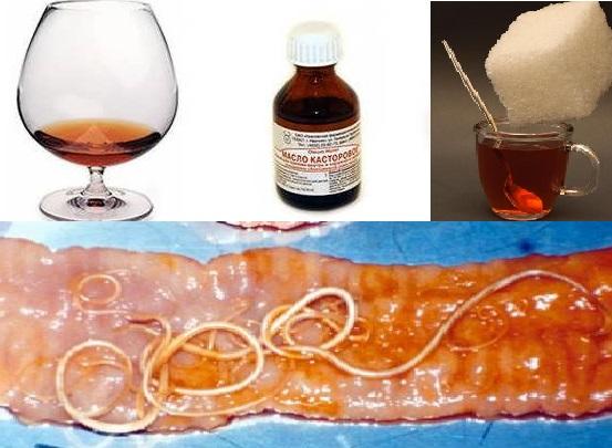 рецепты от паразитов кишечнике